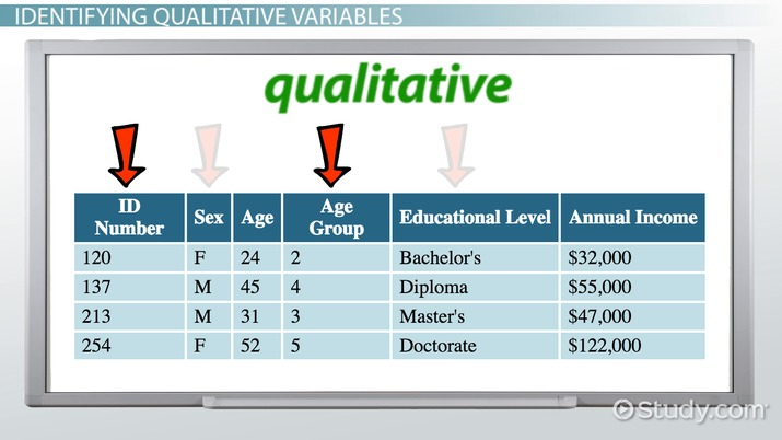 topic guide qualitative research example