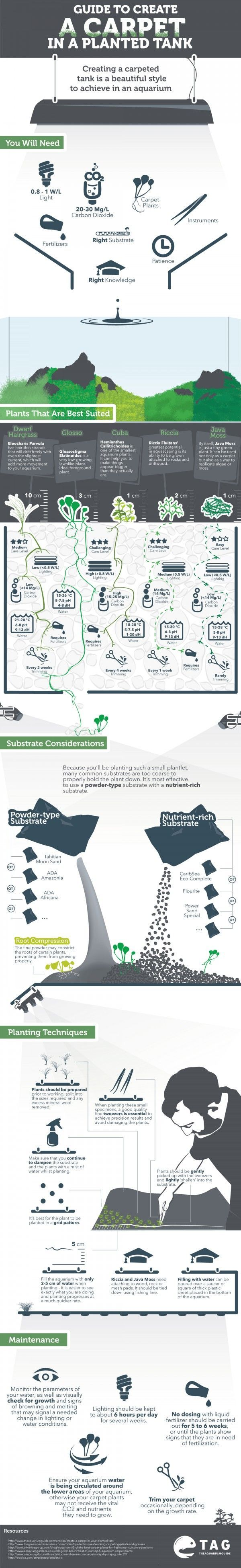 taxonomic guide to freshwater plankton