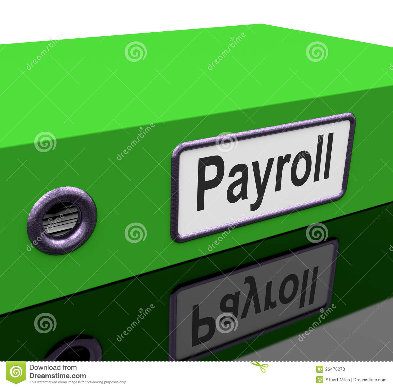payroll application contain data on employees