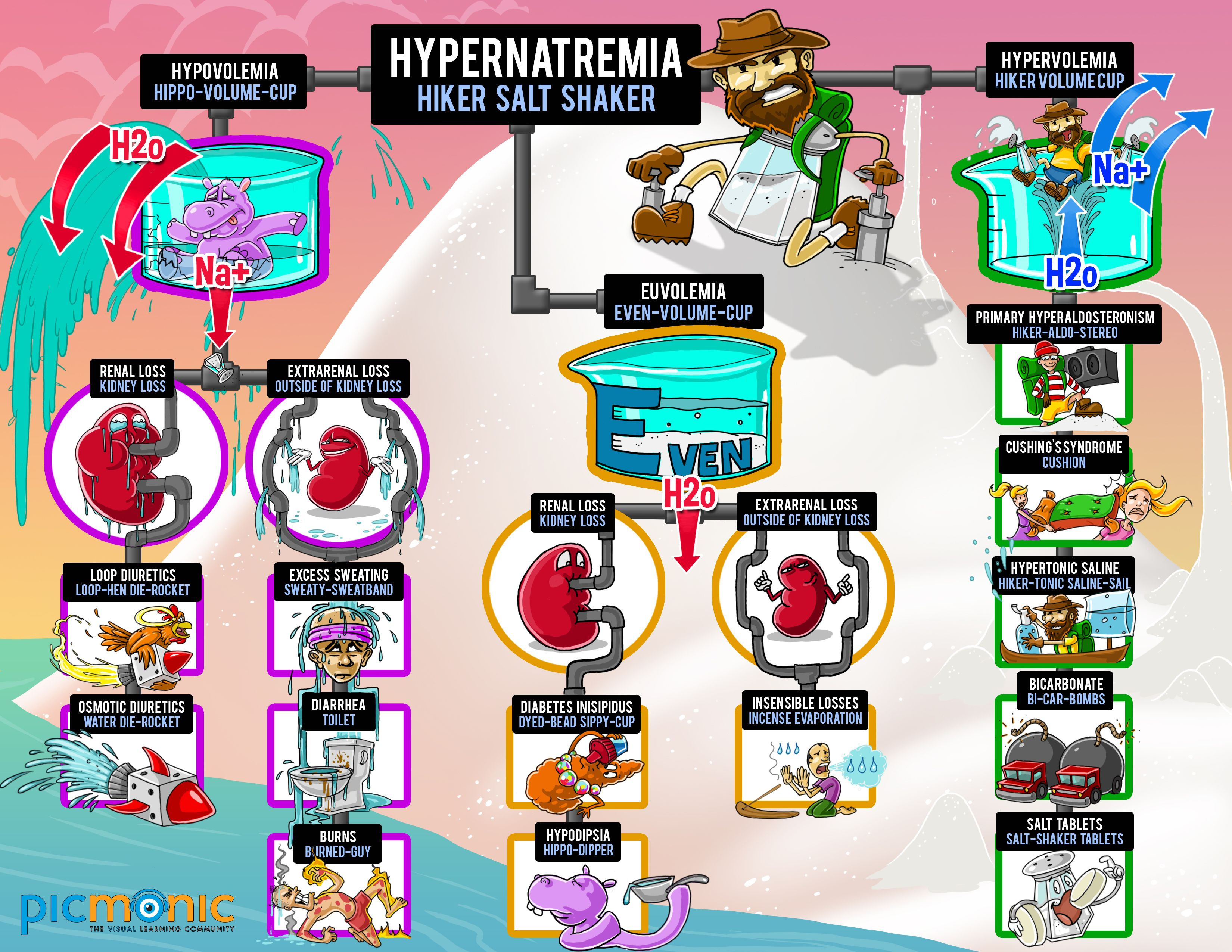 significance of hypo and hypernatremia in chronic kidney disease pdf